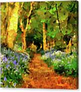 Deep In A Forest Canvas Print