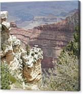Deep In Canyon Canvas Print