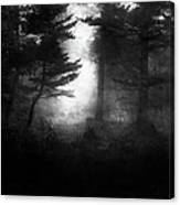 Deep In The Dark Woods Canvas Print