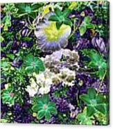 Deep Purple Canvas Print