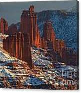 Deep Red In A Sea Of White Canvas Print