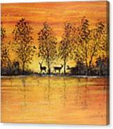 Deer At Sunset-2 Canvas Print