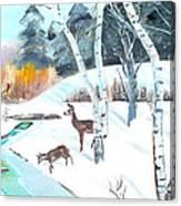 Deer Creek In Winter Canvas Print
