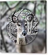 Deer Hunter's View Canvas Print