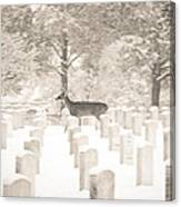 Deer In Snow Canvas Print