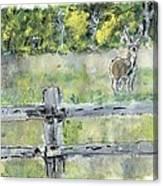 Deer Scene Canvas Print