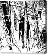 Deer Shadow Canvas Print