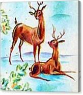 Deers Break Canvas Print