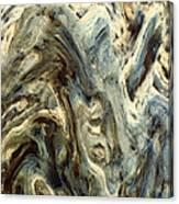 Deformation Canvas Print