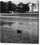 Defuniak Lake  Canvas Print