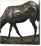 Degas, Edgar 1834-1917. Horse Canvas Print