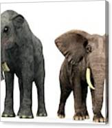 Deinotherium And Elephant Compared Canvas Print