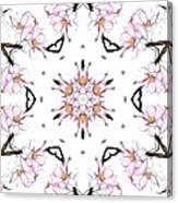 Delicate Cherry Blossom Fractal Kaleidoscope Canvas Print