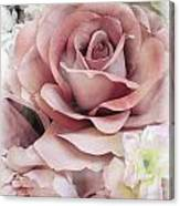 Delicate Rose Canvas Print