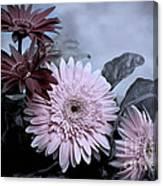 Delicate Solstice Canvas Print