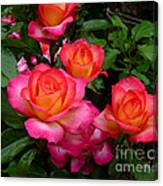 Delicious Summer Roses Canvas Print