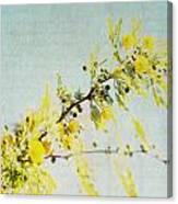 Delight - Square Canvas Print