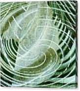 Delightful Swirl Canvas Print