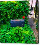 Deliver The Mail Canvas Print