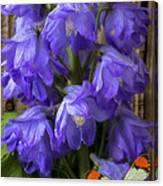 Delphinium And Butterfly Canvas Print