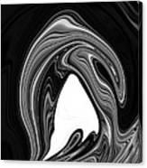Delphinus Delphis Canvas Print