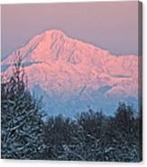 Denali December Sunrise Canvas Print
