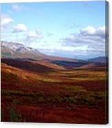Denali In The Autumn Canvas Print