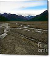 Denali National Park 3 Canvas Print