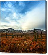 Denali National Park Canvas Print