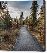 Denali Path Canvas Print