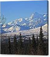 Denali Winter Canvas Print