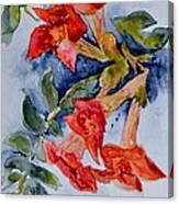 Denim And Brass Canvas Print