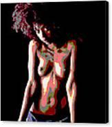 Denim Canvas Print