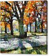 Denver Park 3 Canvas Print