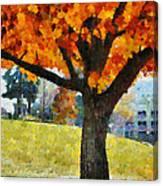 Denver Park 5 Canvas Print