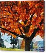 Denver Park 6 Canvas Print