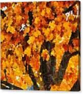 Denver Park 7 Canvas Print