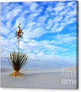 Desert Beauty White Sands New Mexico Canvas Print