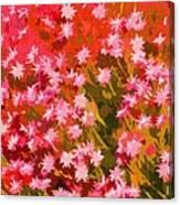 Desert Broom Abstract  Canvas Print