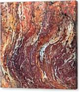 Desert Canyon Canvas Print