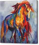 Desert Dance Canvas Print
