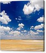 Desert Flatlands Canvas Print