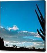 Desert Landscape Silhouette Canvas Print