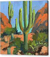 Desert Morning Saguaro Canvas Print