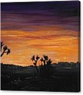 Desert Night Canvas Print