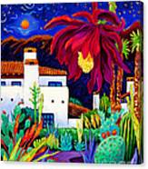 Desert Night Music Canvas Print