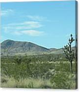 Desert Panoramic Canvas Print