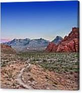 Desert Path Canvas Print