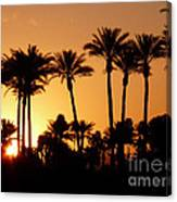 Desert Silhouette Sunrise Canvas Print