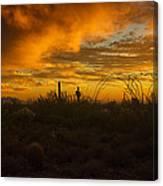 Desert Southwest Skies  Canvas Print